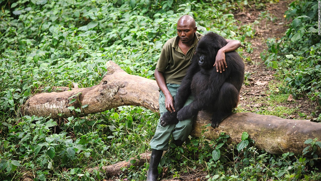 Virunga National Park | Photo © Phil Moore/AFP/Getty Images